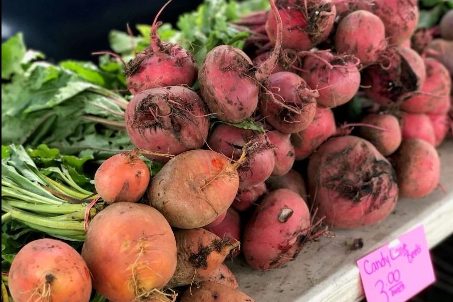 Beets from Penn Farm